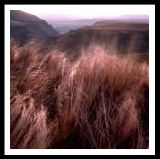 landscape09.jpg